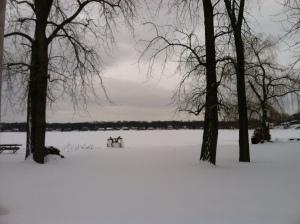 lake-pic